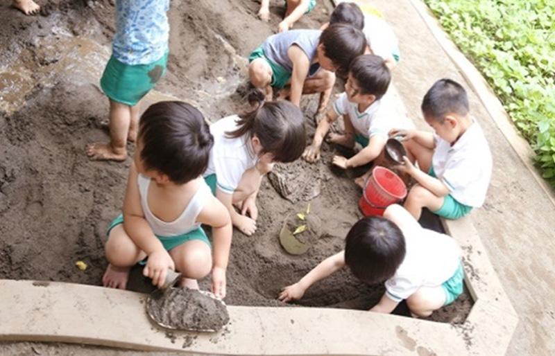 園の教育プログラム